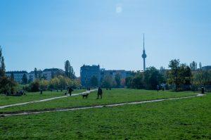 Der Berlin Mauerpark läd zum picknicken ein.